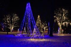 Landskap för Niagara Falls ljusfestival Royaltyfria Bilder