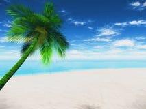 landskap för palmträd 3D med abstrakt effekt Royaltyfri Fotografi