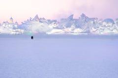 Landskap för skulptur för snö för parkontur hållande ögonen på Arkivfoton