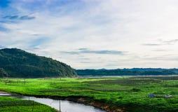 Landskap för sommarbergplatå med vatten Arkivfoto