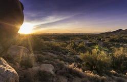 Landskap för stenblock för Arizona ökenkaktus arkivfoton
