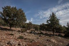 Landskap för stenigt berg Royaltyfri Fotografi