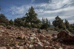 Landskap för stenigt berg Royaltyfria Bilder