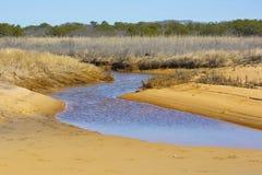 Landskap för stranderosion Arkivbilder