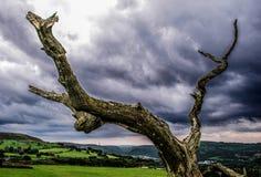Landskap för svart moln Arkivbild
