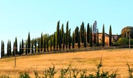 Landskap för Tuscany soluppgångbygd, Italien Royaltyfri Foto