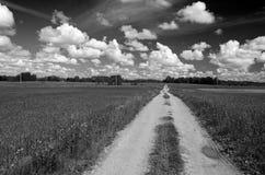 Landskap för väg för grus för sommartid lantligt Arkivfoton
