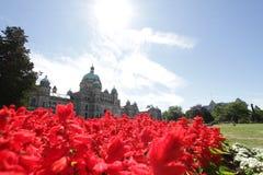 Landskap för Vancouver ö Fotografering för Bildbyråer