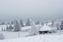 Landskap för vinterbergby royaltyfri bild