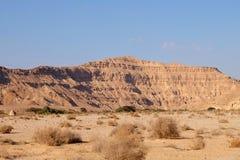 Landskap för wadi för Negev öken Royaltyfria Bilder