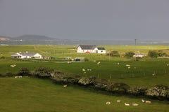 Landskap Fanad huvud Ståndsmässiga Donegal ireland arkivbilder