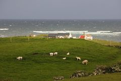 Landskap Fanad huvud Ståndsmässiga Donegal ireland royaltyfria bilder