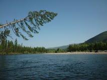 Landskap flod Arkivfoto