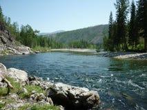 Landskap flod Royaltyfri Fotografi