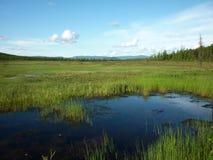 Landskap flod Arkivbilder