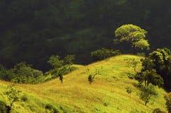Landskap fotografi av den soliga kullen mot dramatisk bakgrund Royaltyfria Bilder