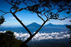 Landskap från det Indonesien berget Royaltyfri Fotografi