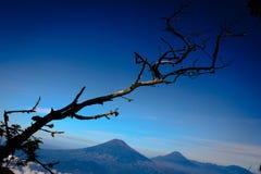 Landskap från det Indonesien berget Royaltyfri Bild