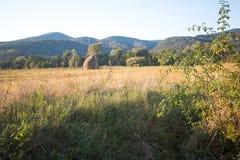 Landskap från en by Royaltyfria Bilder