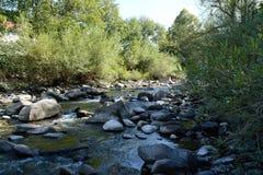 Landskap från en flodspring till och med skogen arkivfoto