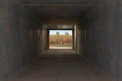 Landskap från en tunnel Royaltyfria Bilder