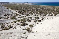 Landskap från kullen nära Puerto Madryn, en stad i det Chubut landskapet, Patagonia, Argentina royaltyfri foto