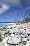 Landskap för karibisk ö Royaltyfri Fotografi
