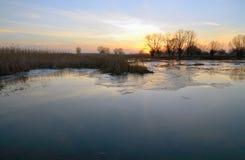 Landskap högt vatten på flodbanken på solnedgången royaltyfria bilder
