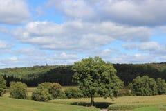 Landskap i östliga församlingar i Quebec royaltyfri foto