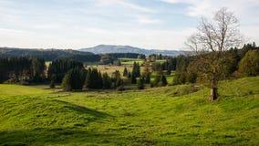 Landskap i övreBayern Arkivfoto