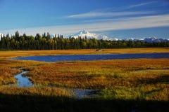Landskap i Alaska arkivfoton