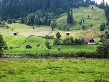 Landskap i Bucovina Royaltyfria Foton