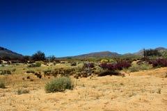 Landskap i Cederbergen, Sydafrika. Arkivfoton