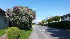 Landskap i dåliga Ragaz Schweiz royaltyfri bild