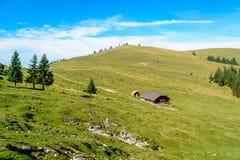 Landskap i de österrikiska fjällängarna Arkivfoton