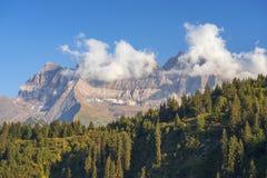 Landskap i de schweiziska fjällängarna Royaltyfri Bild