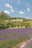 Landskap i den franska Dromen Arkivfoton