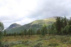 Landskap i ett av den Norge nationalparken Royaltyfri Fotografi