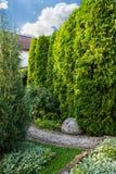 Landskap i gården, garneringservice royaltyfri foto