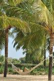 Landskap i Goa Arkivbilder