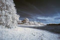 Landskap i infrared av på engelska bygd för sjö i sommar Royaltyfria Foton