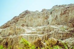 Landskap i Israel Royaltyfria Bilder