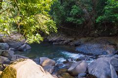Landskap i Khao Sok National Park i Thailand Khao Sok National Park regndjungelskogen i det Surat Thani landskapet Arkivbilder