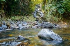 Landskap i Khao Sok National Park i Thailand Khao Sok National Park regndjungelskogen i det Surat Thani landskapet Royaltyfri Foto