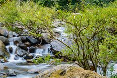 Landskap i Khao Sok National Park i Thailand Khao Sok National Park regndjungelskogen i det Surat Thani landskapet Arkivbild