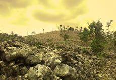 Landskap i kullarna av en höglands- koloni Fotografering för Bildbyråer
