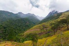 Landskap i kullelandet av Sri Lanka Arkivbilder
