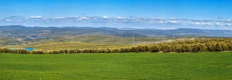 Landskap i landskap av Jaen, Spanien Royaltyfri Fotografi