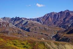 Landskap i nationalparken Denali i Alaska royaltyfri fotografi