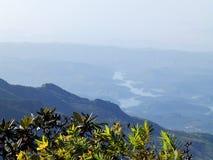 Landskap i nationalparken Horton Plains, Sri Lanka royaltyfri foto